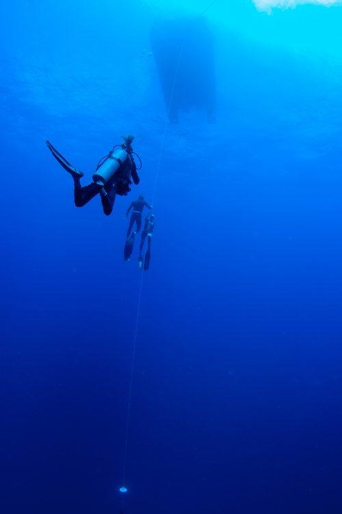 curso-mergulho-livre-pfi-freediver